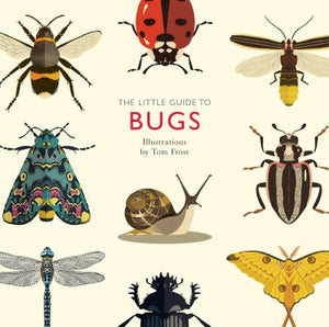 The Little Guide to Bugs, by Alison Davies