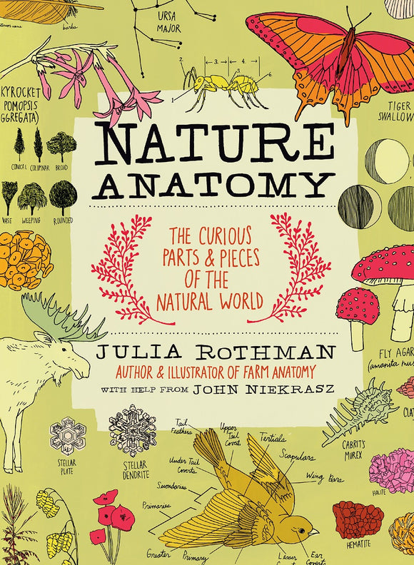 Nature Anatomy, by Julia Rothman