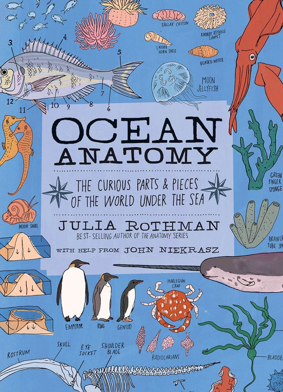 Ocean Anatomy, by Julia Rothman