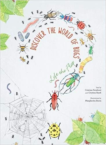 Discover the World of Bugs, by Margherita Borin
