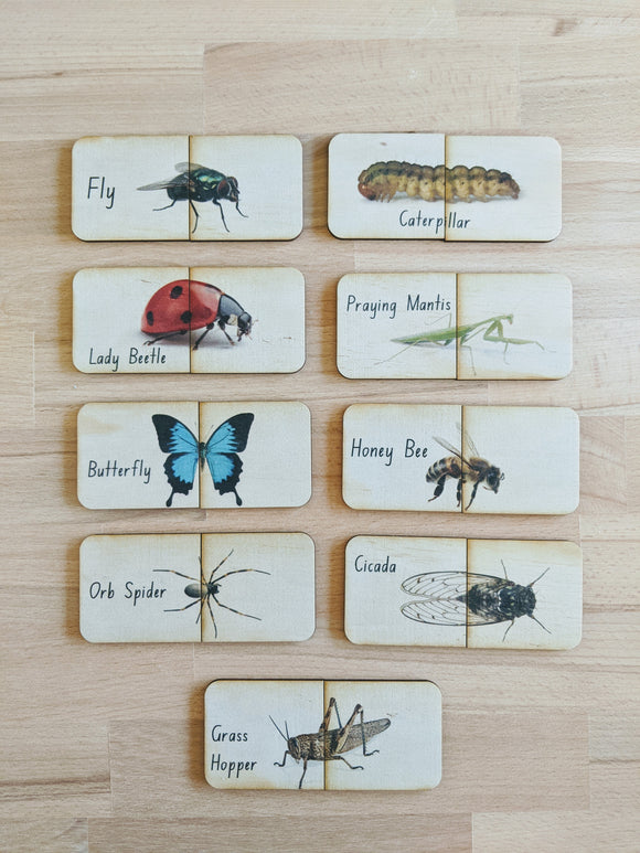 Garden Bugs - Matching Puzzle