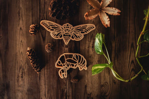 Cicada Eco Cutter Set of 2
