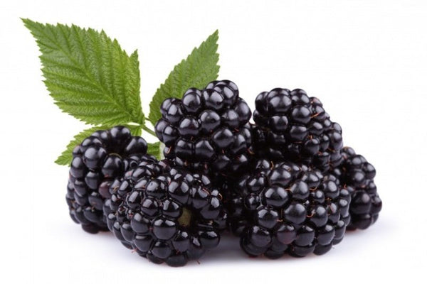 BLACKBERRY  (Triple Container)