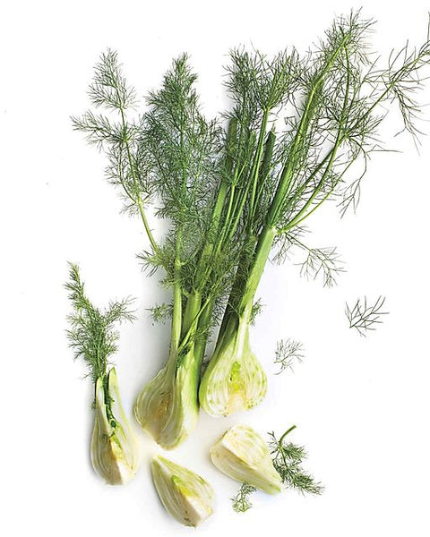 ANISE/FENNEL (By the head)
