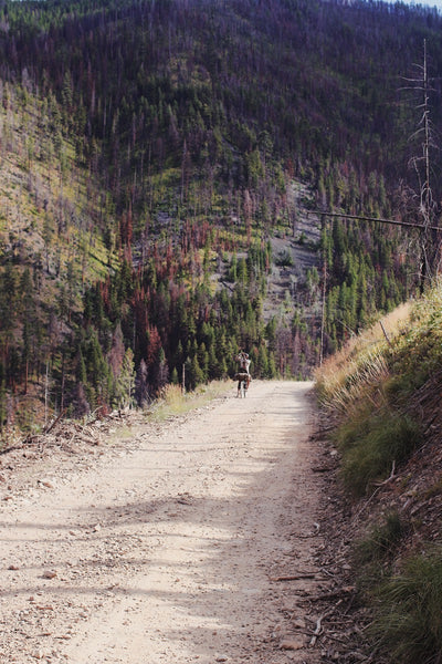 bike packing idaho wild west route