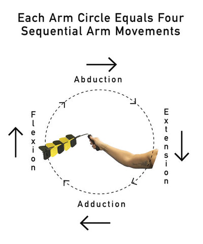 Picture of an arm circle equals four sequential arm movements