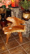 Teak root chair - Birdie's Nest Inc