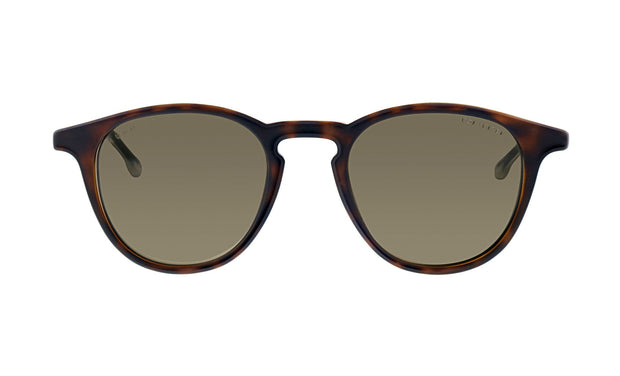 Hugo Boss BOSS 0 /S_N Havana/Grey Plastic Oval Sunglasses Brown Lens