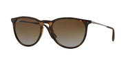 Ray-Ban 4171 Polarized Round Sunglasses