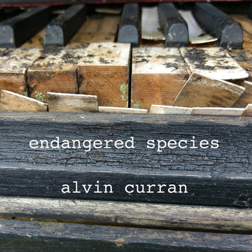 Alvin Curran: Endangered Species