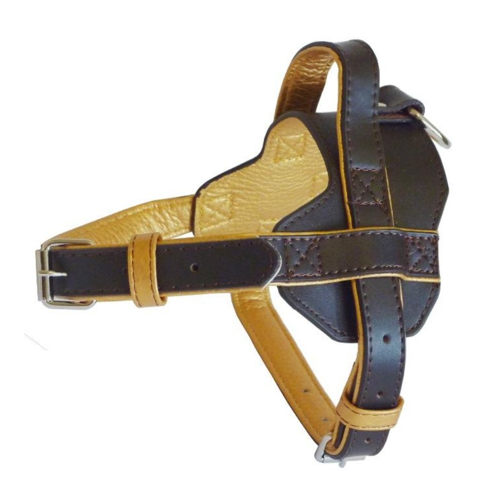 Leather Pet Harness, Stylish Pet Harness, Matching Collar, Free Shipping in Europe, Different sizes