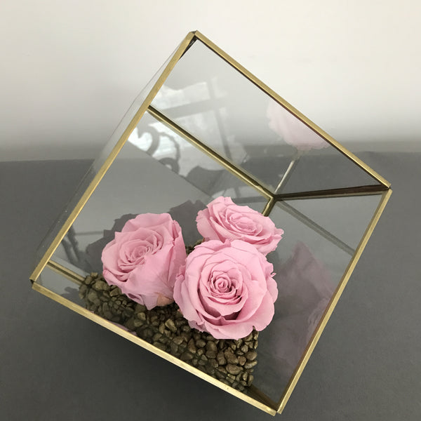 Terrarium Mini Rose Garden