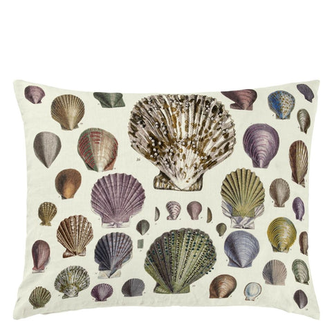 Captain Thomas Brown's Shells Oyster Cushion