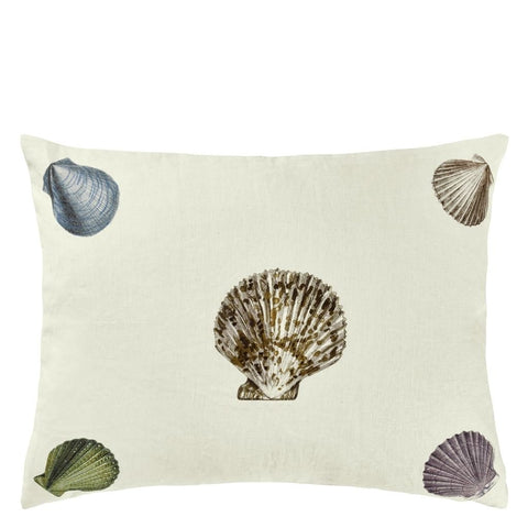 John Derian Captain Thomas Brown's Shells Oyster Kissen