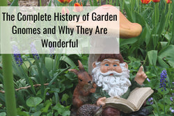The Complete History of Garden Gnomes & Why They Are Wonderful