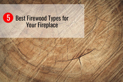 5 Best Firewood Types for Your Fireplace