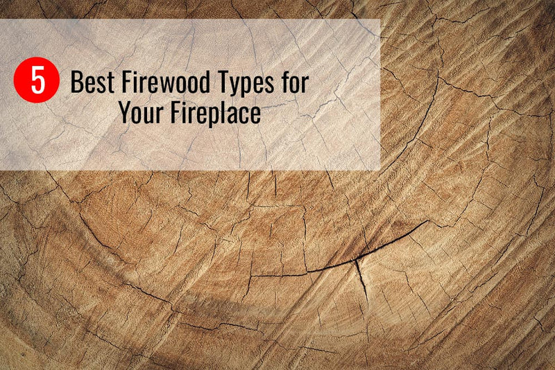 5 Best Firewood Types to Burn for Your Fireplace