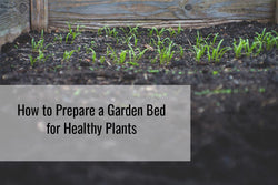 Learn more about how to prepare a garden bed for healthy plants