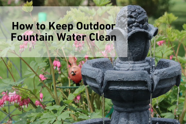 Learn how to keep outdoor fountain water clean.