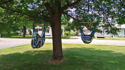 Two hammock chairs hanging from a tree
