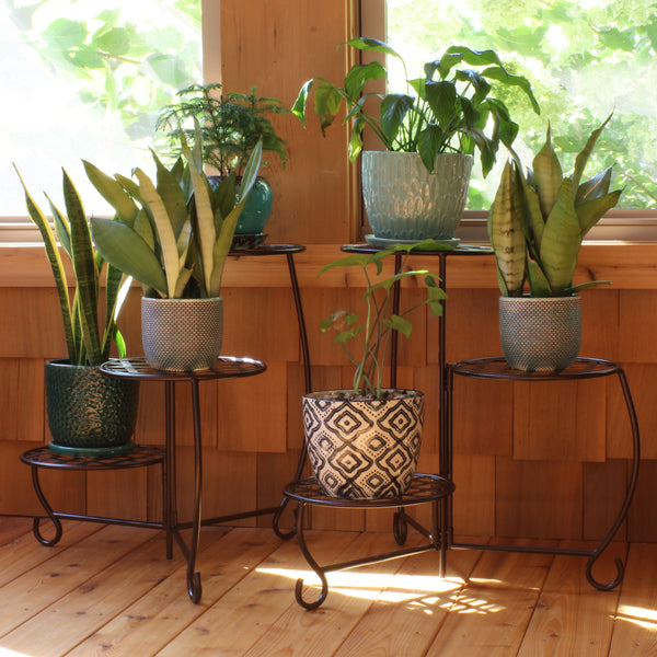 A plant stand that places your plants high off the ground are effective at keeping bugs off your plants.