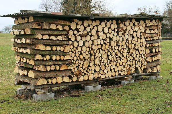 Covered firewood pile