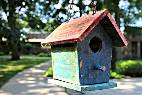 Adding a bird house is a great way to attract birds to your yard or bird feeder.
