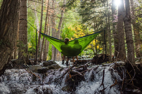Hanging a hammock from trees in a forest.