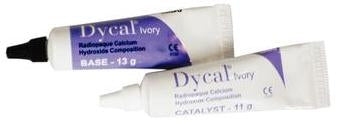 Dycal Single Kit Calcium Hydroxide Liner, Base & Catalyst