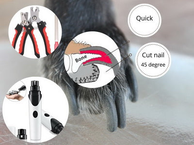 What is the best way to trim dog nails