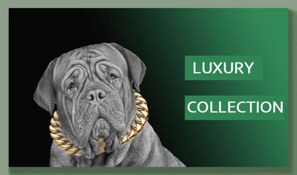 dog-luxury-collection