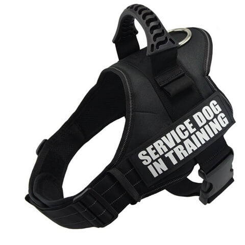 nylon mastiff dog harness