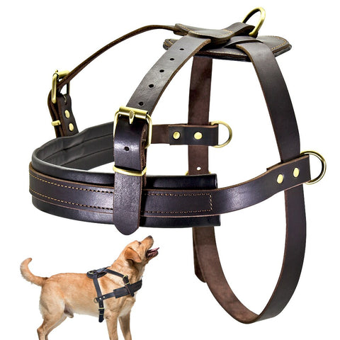 Leather  pulling harness for large breed dogs
