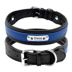 blue dog leather collar