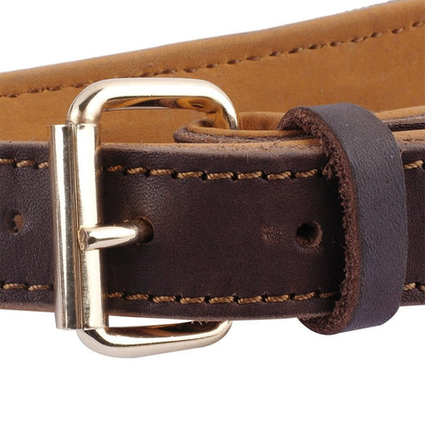metal buckle on leather dog harness