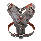 Leather harness for large dog breeds