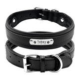 black dog leather collar