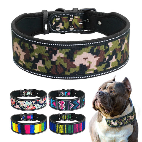 nylon dog collars for american bullies