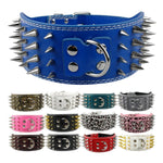 3 inch wide Bully spike leather collar