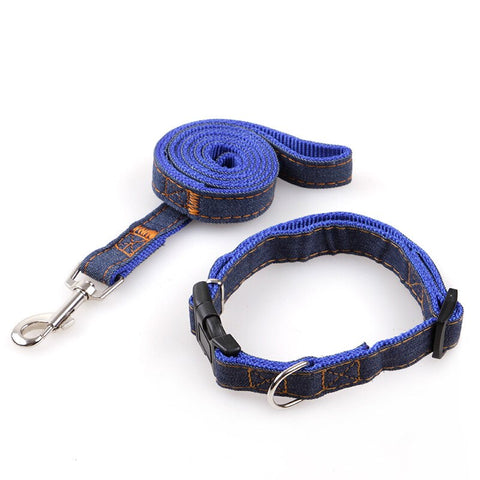 Mastiff collar-leash set