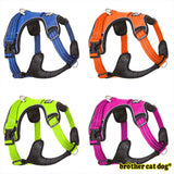 Reflective bully harness four colors