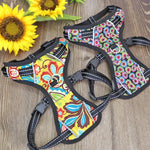 No Pull colorful and reflective dog harness with two color patterns