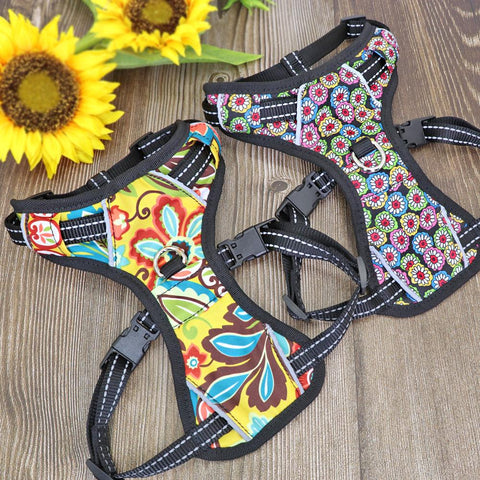 No Pull colorful and reflective dog harness