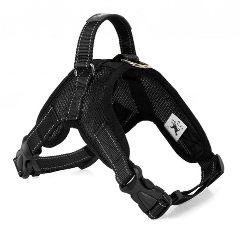 mastiff harness collar