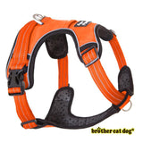Reflective bully harness in 7 colors orange color