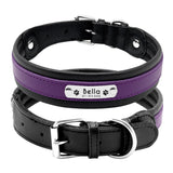 purple dog leather collar