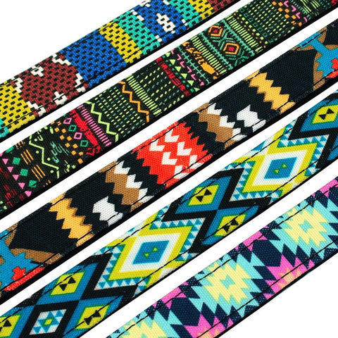 beautiful colors on nylon dog collar