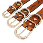 large dog leather collar buckle