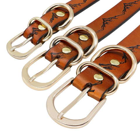 buckles of leather dog collar