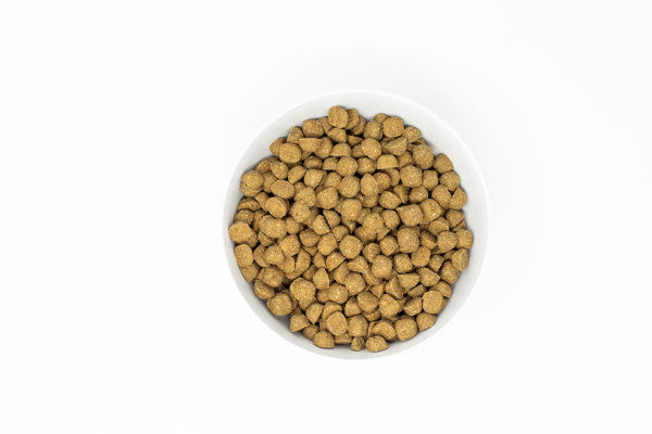 Stella & Chewy's Raw Coated Kibble With Wholesome Grains Grass Fed Lamb Recipe Dry Dog Food